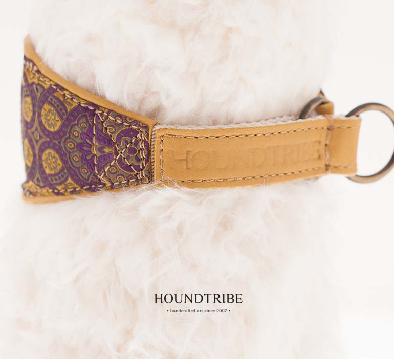 houndtribe-collar-7321