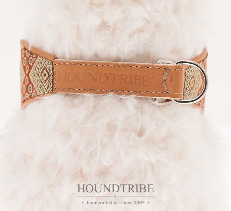 houndtribe-8066