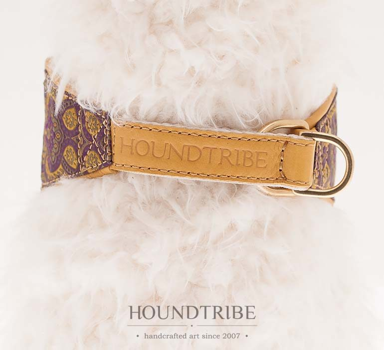 houndtribe-8076