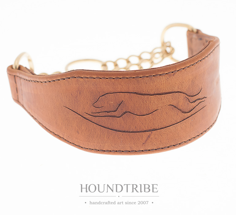 coursing hound collar