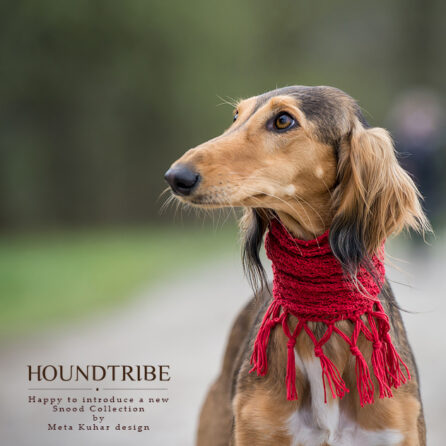 sighthound collars with jacquard trim