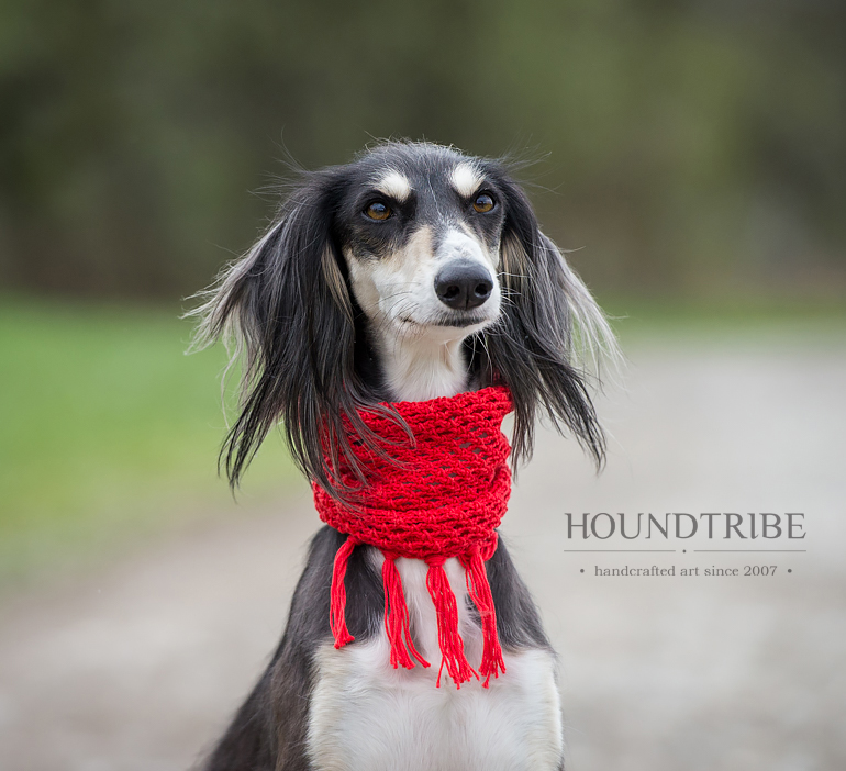 Saluki Snood