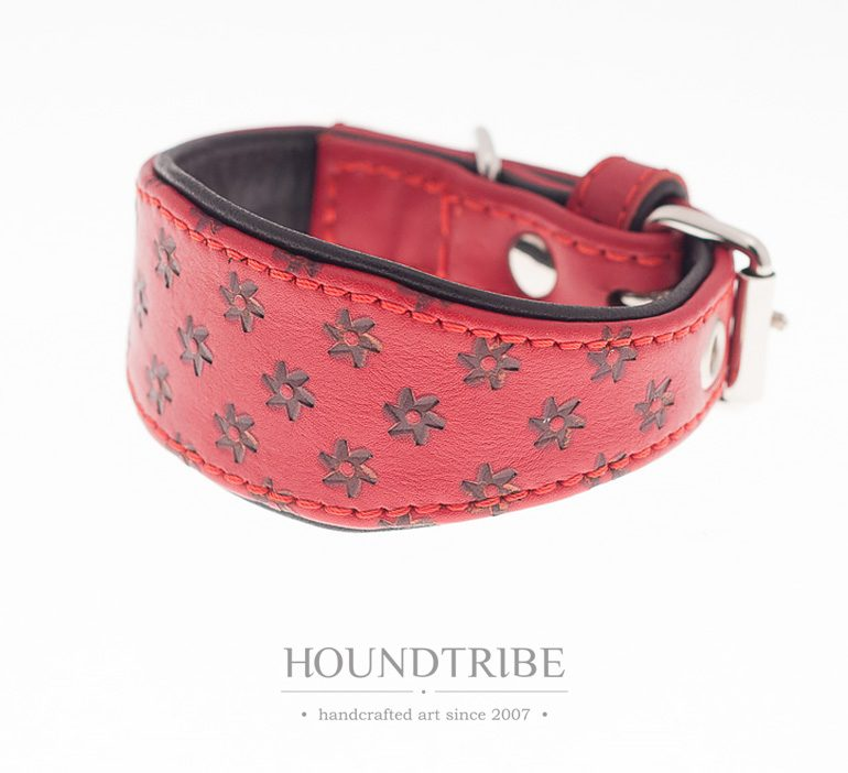 houndtribe-9085