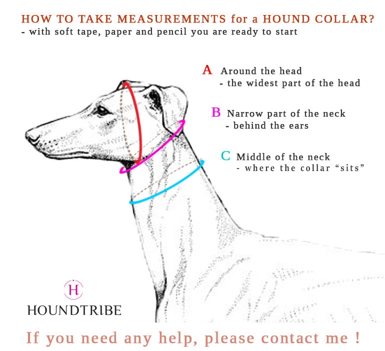 Measurements for dog collar