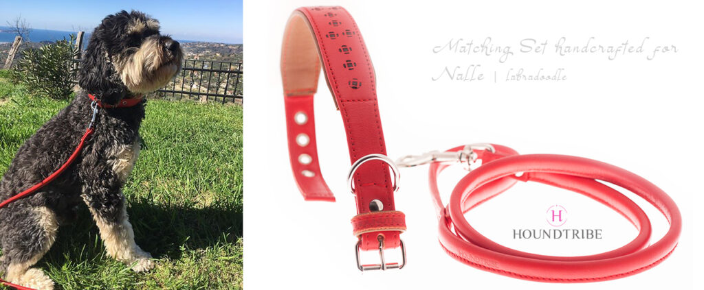 matchin set for labradoodle, labradoodle matching set of leather collar and leash, made from red nappa leather and unique hand burned pattern on leather