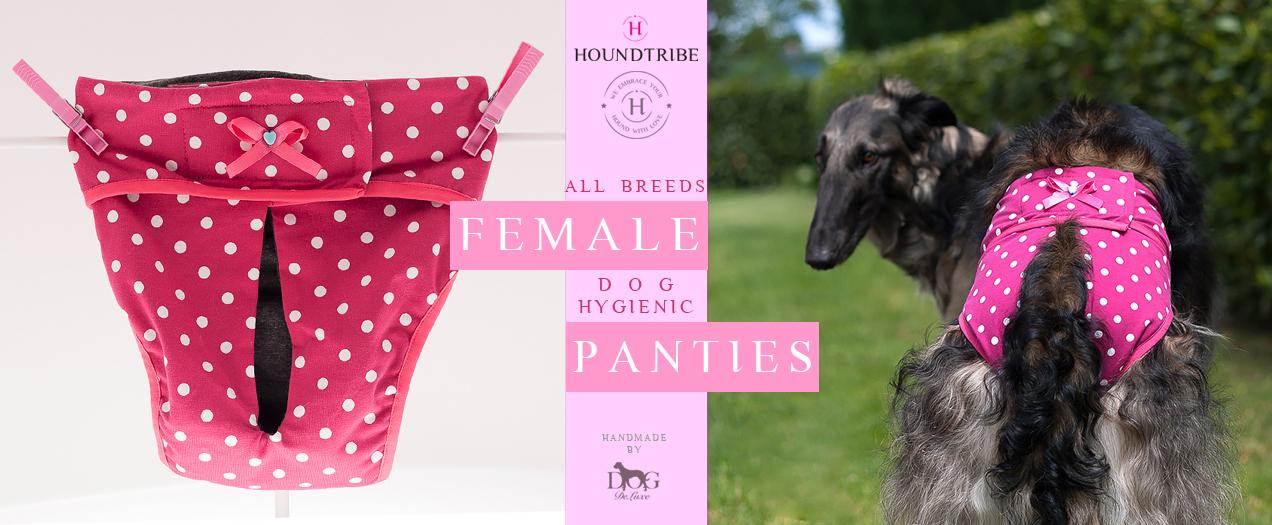 dog female hygienic panties