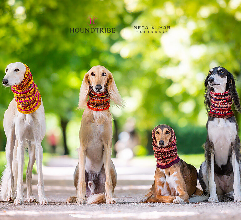 saluki dog snood