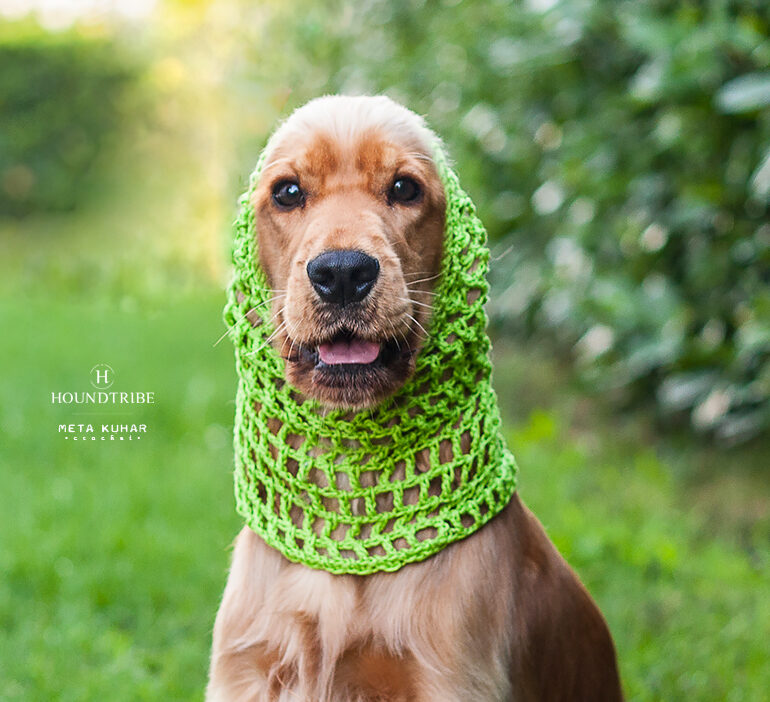 cocker snood