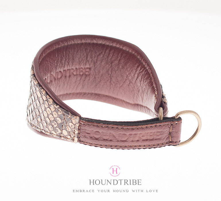 Python Sighthound collar by Houndtribe