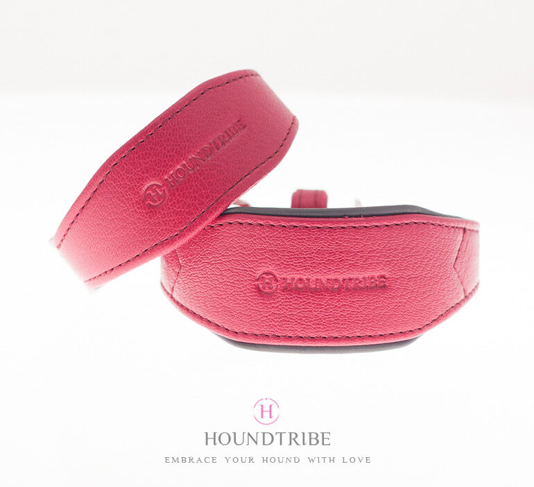 Sighthound Leather Collars